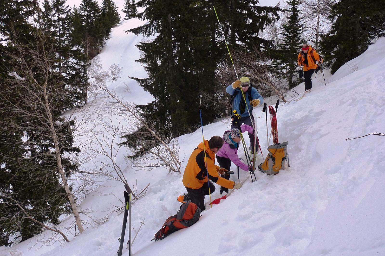 Calendrier sorties - Initiation à la recherche de victime en avalanche
