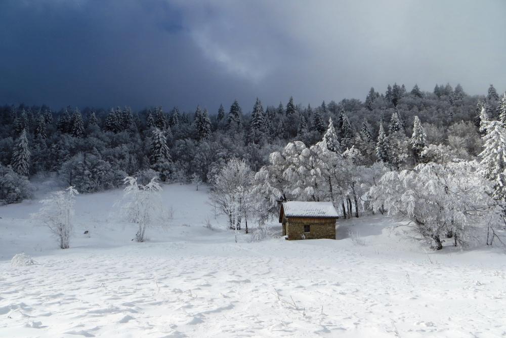9fbf786ec2 Initiation ski nordique demi journée - Bureau des guides de Grenoble